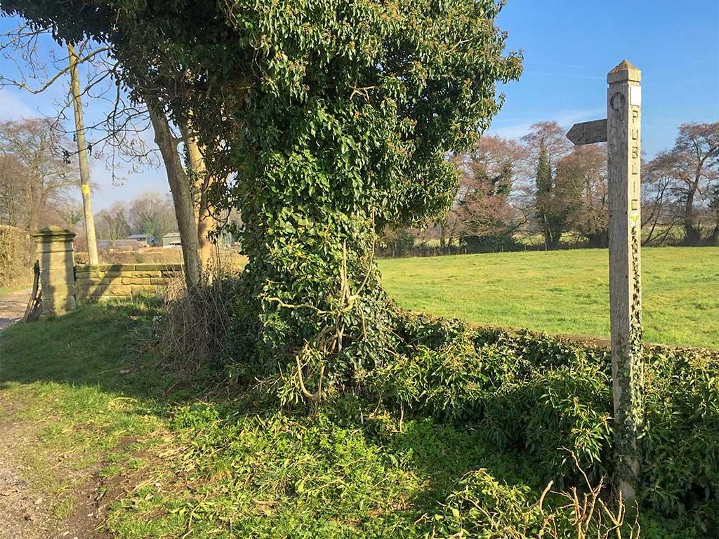 Walks from the farm gate